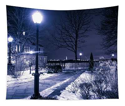 A Battery Park Winter Tapestry