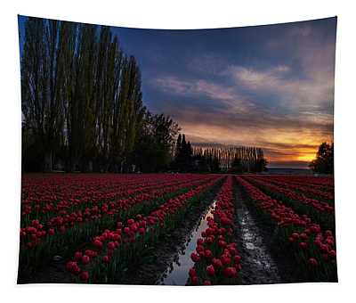 A Calm Reflective Evening Tapestry