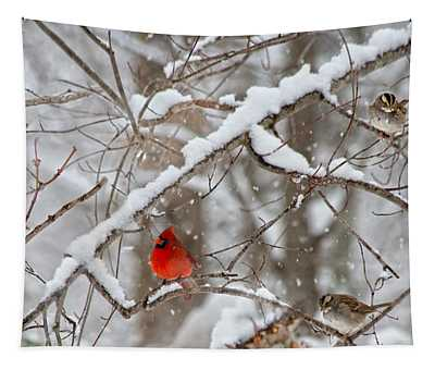 A Cardinal Snow Tapestry