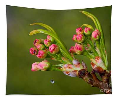 A Drop Of Water Tapestry
