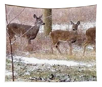 A Dusting On The Deer Tapestry