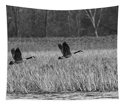 A Pair Of Geese Leaving The Marsh In Black And White Tapestry