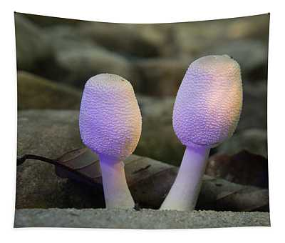 A Pair Of Young Mushrooms Tapestry
