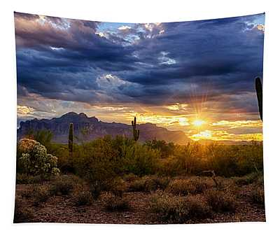 A Sonoran Desert Sunrise Tapestry