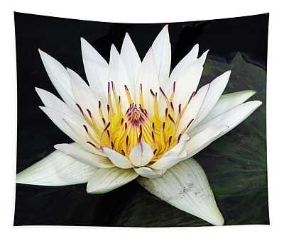 Botanical Beauty Tapestry