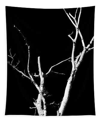 Abstract Branches Tapestry
