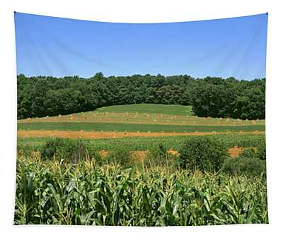 Agriculture - Strip Cropping Of Grain Tapestry