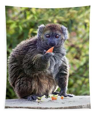 Alaotran Gentle Lemur Tapestry