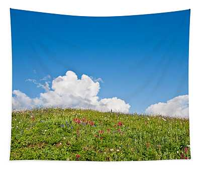 Alpine Meadow And Cloud Formation Tapestry