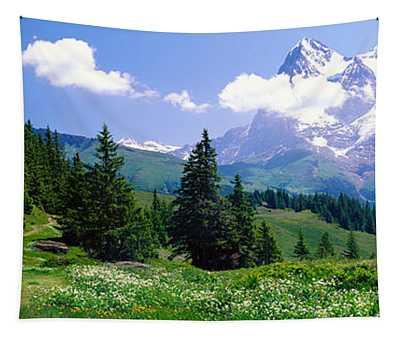 Alpine Scene Near Murren Switzerland Tapestry