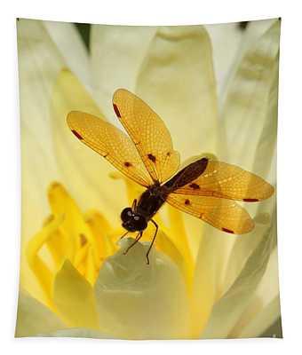 Designs Similar to Amber Dragonfly Dancer