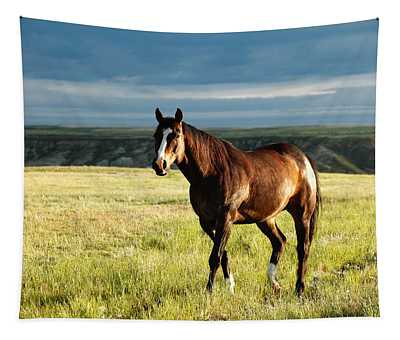 American Quarter Horse Tapestry
