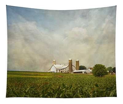 Tapestry featuring the photograph Amish Farmland by Kim Hojnacki