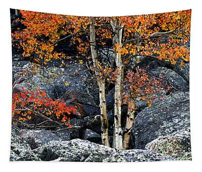 Among Boulders Tapestry