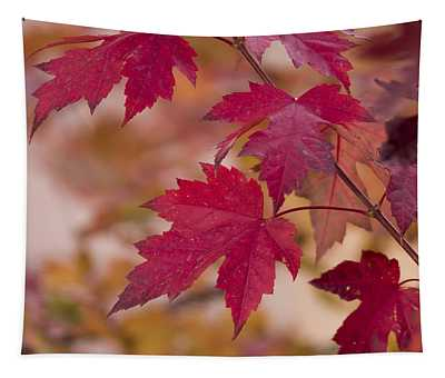 Among Maples Tapestry