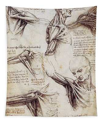 Anatomical Studies Of The Shoulder Tapestry