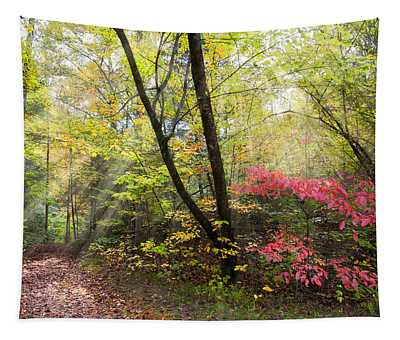 Appalachian Mountain Trail Tapestry