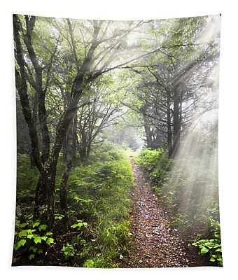 Appalachian Trail Tapestry