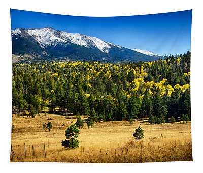 As Fall Arrives In Arizona  Tapestry