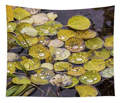 Aspen Drops Tapestry by Darrell E Spangler