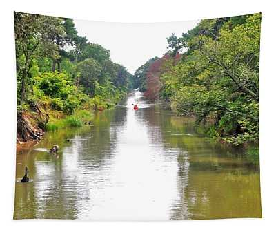 Assawoman Canal - Delaware Tapestry