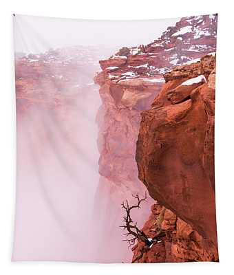 Atop Canyonlands Tapestry