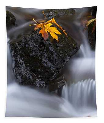 Autumn Above And Below Tapestry