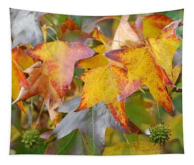 Autumn Acer Leaves Tapestry