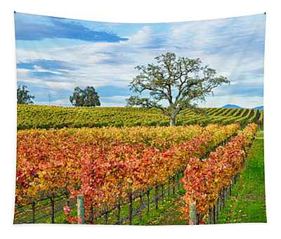 Autumn Color Vineyards, Guerneville Tapestry