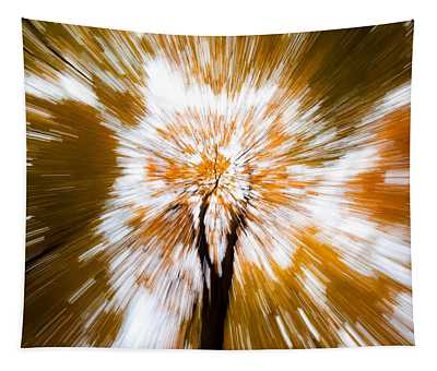 Autumn Explosion Tapestry