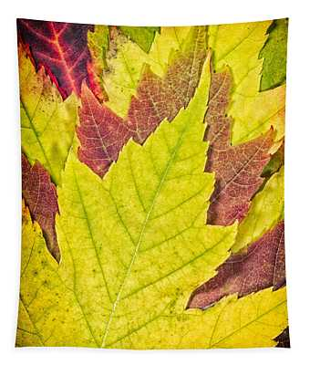 Autumn Maple Leaves Tapestry