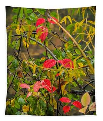 Autumn Rain Tapestry