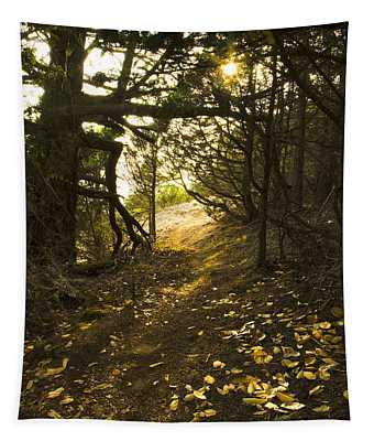 Autumn Trail In Woods Tapestry