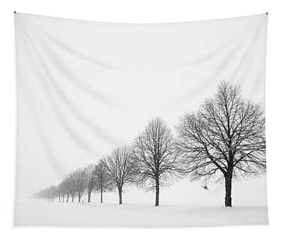 Tapestry featuring the photograph Avenue With Row Of Trees In Winter by Matthias Hauser