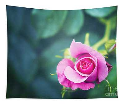 Nature Photographs Wall Tapestries