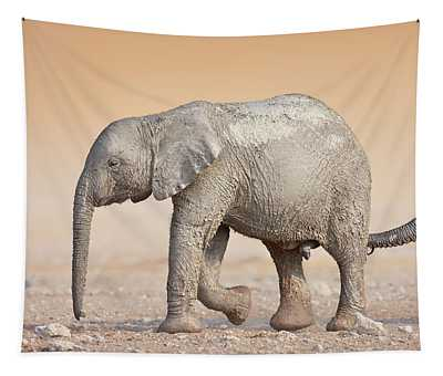 Baby Elephant  Tapestry