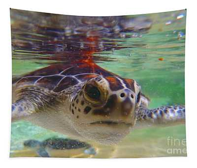 Baby Turtle Tapestry