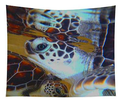 Baby Turtles Tapestry