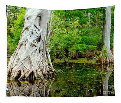 Backcountry Tapestry
