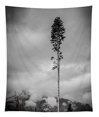 Lone Tree Landscape  Tapestry