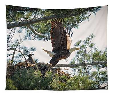 Bald Eagle With Eaglet Tapestry