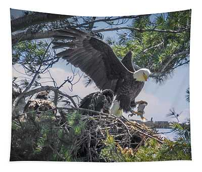 Bald Eagle With Eaglets And Fish Tapestry