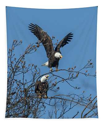 Bald Eagles Screaming Drb169 Tapestry