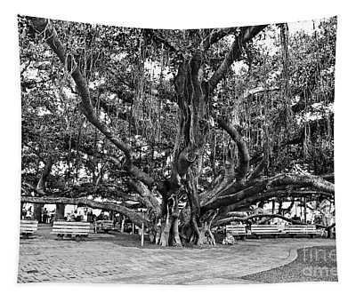 Banyan Tree Tapestry