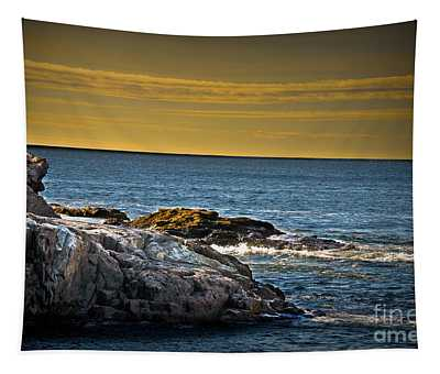 Tapestry featuring the photograph Bar Harbor Seascape by Gary Keesler