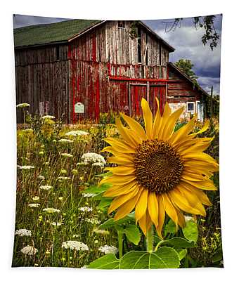 Barn Meadow Flowers Tapestry