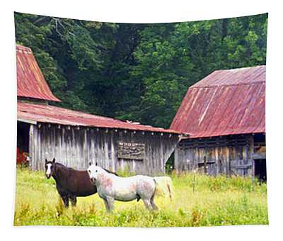 Barns And Horses Near Mills River Nc Tapestry