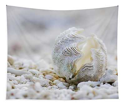 Beach Clam Tapestry