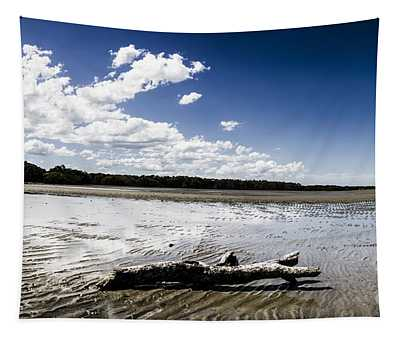 Beached Driftwood Tapestry