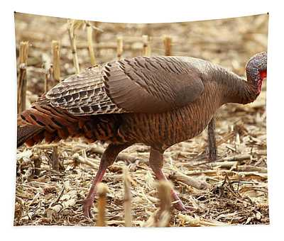 Bearded Wild Turkey Hen Tapestry